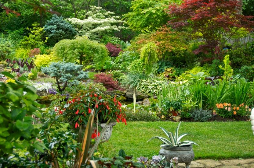 Marion's Garden
